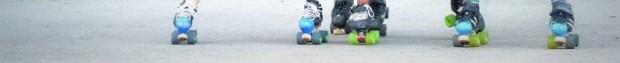 cropped-11209774_1001752896524201_1418164459173223708_n2.jpg